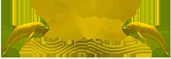 Small Nav Logo